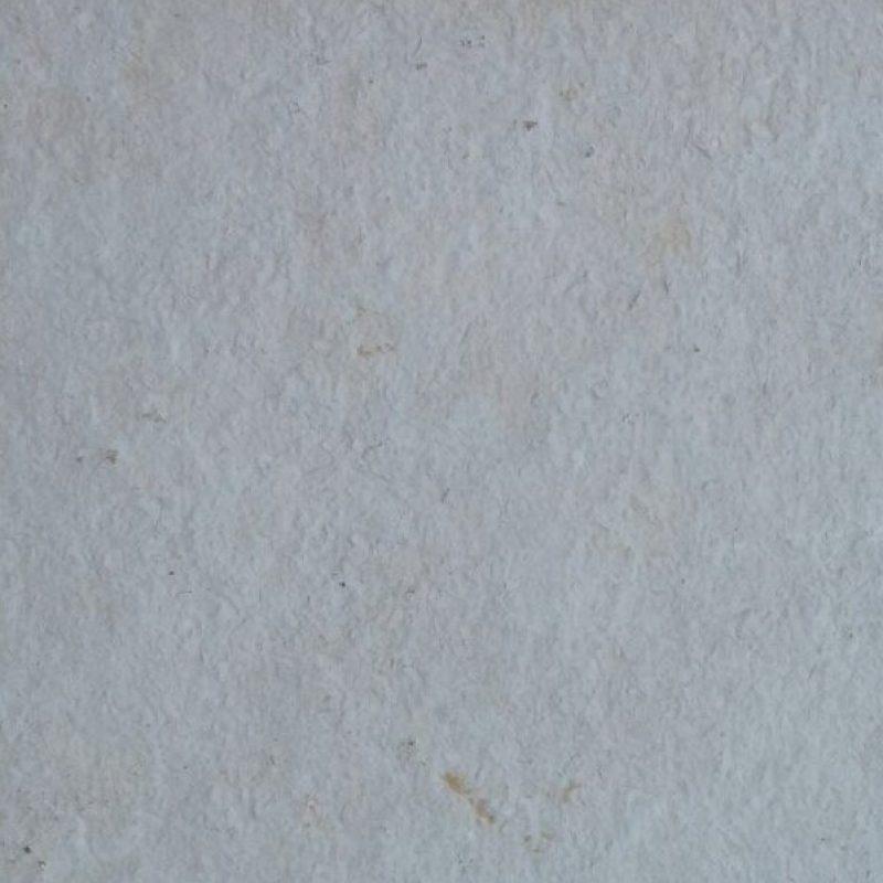 morayma branca 2
